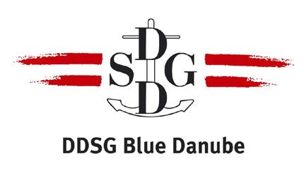 ddsg_logo